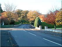 J3731 : Autumn colour at the junction of Marguerite Park and Bryansford Road by Eric Jones