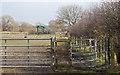 SJ5783 : Footpath to New Farm     by Ian Greig