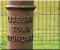 J2464 : Boundary post, Lisburn (4) by Albert Bridge