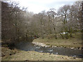 NY7701 : The River Eden just upstream of Shoregill, Mallerstang by Karl and Ali