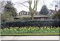 TQ2782 : Flowerbed in Regent's Park by Paul Gillett