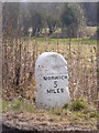 TG1407 : Milestone on the B1108 Watton Road by Adrian Cable