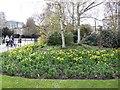 TQ2782 : Flowers at SW of Regent's Park by Paul Gillett