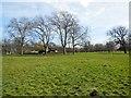 TQ2883 : Trees near Broad walk, Regent's Park by Paul Gillett