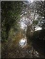 SE3359 : Flood on Smithy Lane by Derek Harper