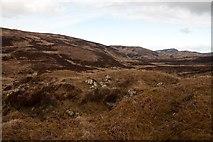 NR3671 : Interesting eminence near Beinn na Heraibh, Islay by Becky Williamson
