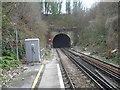 TR2548 : Shepherd's Well Tunnel from Shepherd's Well station by Marathon