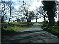SJ7864 : Bagmere Lane looking south by Colin Pyle