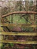 SX9066 : Small path, former Barton tip by Derek Harper