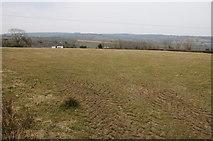 SN0923 : Farmland at Llanycefn by Philip Halling