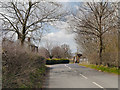 SJ7585 : Bow Lane, Approaching Bowgreen Farm by David Dixon