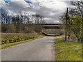SJ7285 : Reddy Lane Motorway Bridge by David Dixon