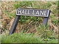 TM1083 : Hall Lane sign by Adrian Cable