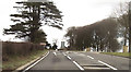 ST3608 : Entrance to Cricket St Thomas park from A30 by John Firth