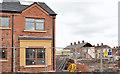 J3272 : New houses, Frenchpark Street, Belfast (2013-2) by Albert Bridge