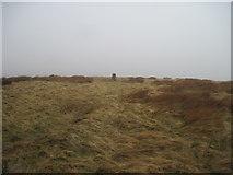 NZ7714 : Trig  Point  on  Newton  Mulgrave  Moor by Martin Dawes