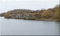 SJ6889 : Rocky north bank, Manchester Ship Canal by Christine Johnstone