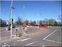 TQ3370 : Crystal Palace Bus Station by Mike Faherty