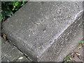 TF5763 : Rivet: Skegness, Scarborough Esplanade by Brian Westlake