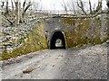 SJ9493 : Apethorn Tunnel by Gerald England