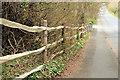 J4681 : Fence, Crawfordsburn (1) by Albert Bridge