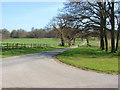 SU9570 : Windsor Great Park by Alan Hunt