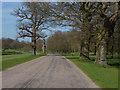 SU9570 : Duke's Lane by Alan Hunt