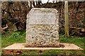 ST9899 : The stone at Thames Head by Steve Daniels