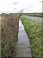 SE8381 : Roadside drain by Thornton Lane by Pauline E