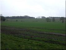 NY8667 : Farmland, Newbrough by JThomas
