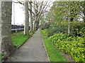 TQ2782 : Tree Lined Path - St John's Wood by Paul Gillett