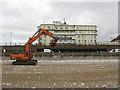 TA1967 : Big plant on the beach by Pauline E