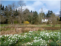 SP4802 : Elizabeth Daryush Memorial Garden by Des Blenkinsopp