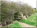 SK5726 : A path through blackthorn by David Lally