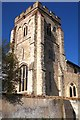 TL3650 : Tower of St Andrew's Church by Tiger