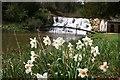 SP4315 : Cascade at Blenheim Palace by Graham Hogg