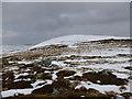 NO2078 : Tom Buidhe ('yellow mound') by Alan O'Dowd