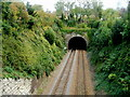 ST8260 : Western portal of a railway tunnel, Bradford-on-Avon by Jaggery