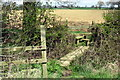 SP8625 : Footbridge and stile on the path to Ash Farm by Philip Jeffrey