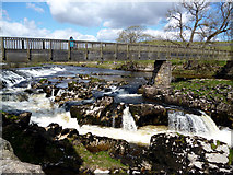 SE0063 : Linton:  Lower Falls and Tin Bridge by Dr Neil Clifton