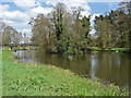 TQ0253 : Island, River Wey by Alan Hunt