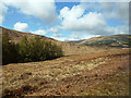 NM6531 : Forest and Moorland View by Mary and Angus Hogg