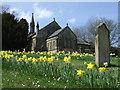 NZ2453 : Holy Trinity Church, Pelton by JThomas