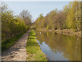 SD5907 : Leeds and Liverpool Canal, Haigh Country Park by David Dixon