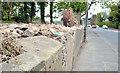 J3784 : The Shore Road, Greenisland (2013-1) by Albert Bridge