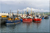 SC2484 : Peel Harbour, West Quay by David Dixon