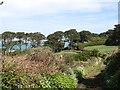 SV9112 : A pleasant track near Bar Farm by David Purchase