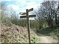 ST7699 : A cross road of paths on Cam Long Down by Ian S