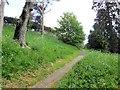 TQ2550 : Reigate Castle grounds by Paul Gillett