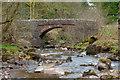 SO0416 : Pont Cwmyfedwen  by Doug Lee